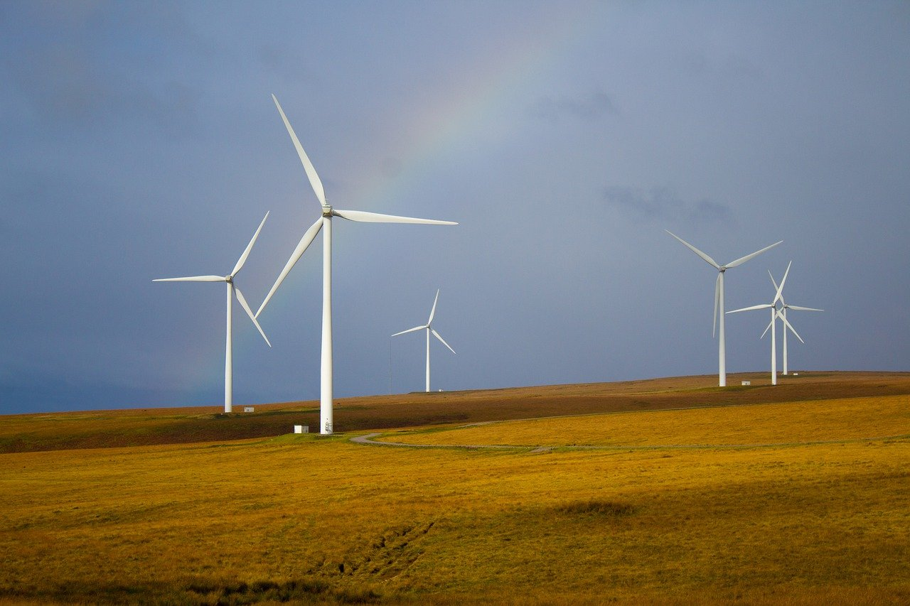 How to Successfully Transition to a Career in Sustainability